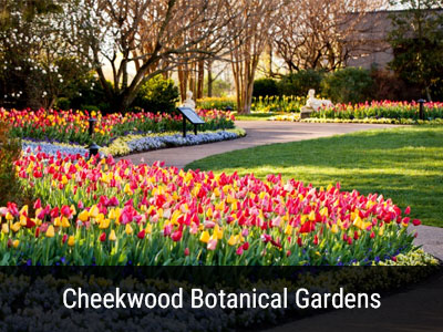 Cheekwood Botanical Gardens